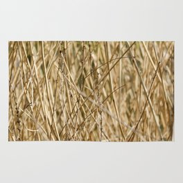 Golden Reed Tangle Rug