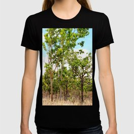 Beautiful forest regrowth T-shirt