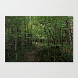 Wandering The Wood Canvas Print