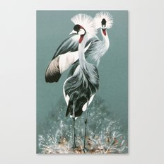 Crowned Cranes Canvas Print
