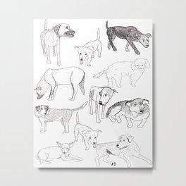 Sayulita Street Dogs Metal Print