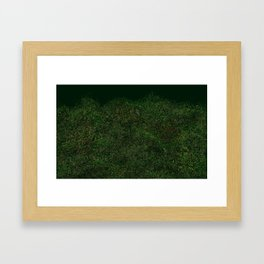 Canopy Scene Framed Art Print