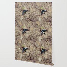 Amata phegea moth Wallpaper