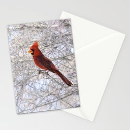 Red Cardinal Along the Salt River Stationery Cards