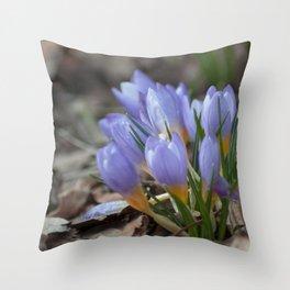 Crocus etruscus in silva Throw Pillow
