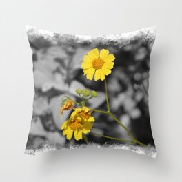 Butter Yellow Brittle Bush on Gray Selective Color Throw Pillow