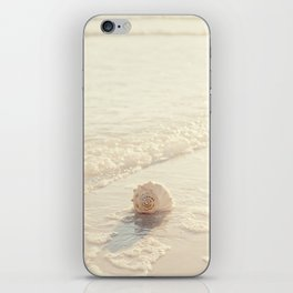 Seashell by the Seashore I iPhone Skin