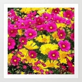 FUCHSIA GARDEN FLOWERS YELLOW COREOPSIS Art Print