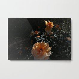Peaches & Creme Metal Print