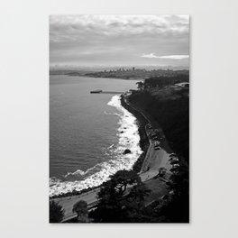 # 229 Canvas Print