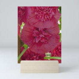 Hollyhock all in a row Mini Art Print