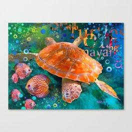 Sea Turtle in Swiming Canvas Print