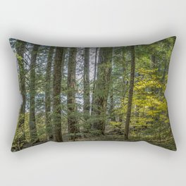 The Woods Around Clear Lake Rectangular Pillow