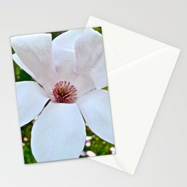 Open Flower Stationery Cards