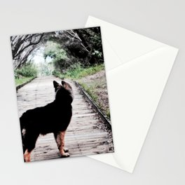 A Puppy's Adventure Stationery Cards