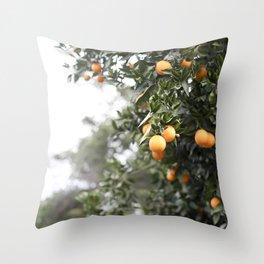 Ojai Oranges Throw Pillow