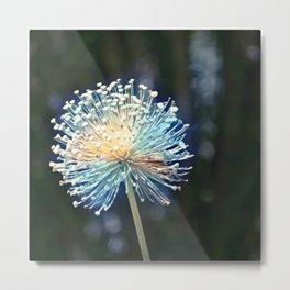 Raceme Flower Metal Print