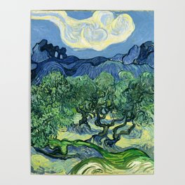 Olive Trees Painting by Vincent van Gogh Poster