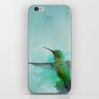 hummingbird iPhone & iPod Skins featuring Hummingbird by Marvelis