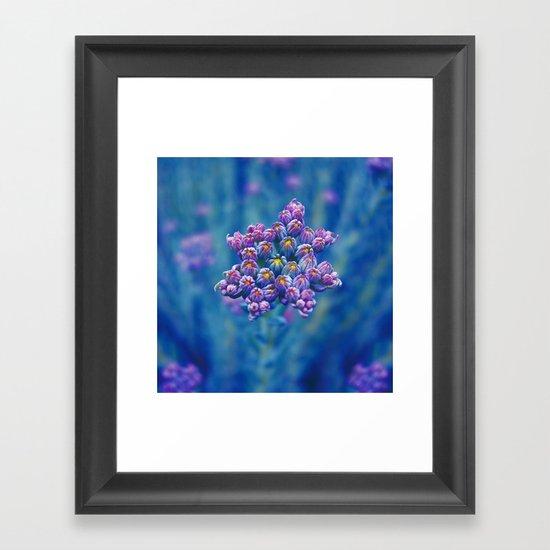 wild herb I Framed Art Print