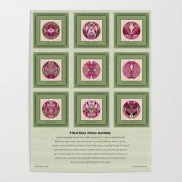 9 Red Shiso Nature Art Meditation Mandalas Poster