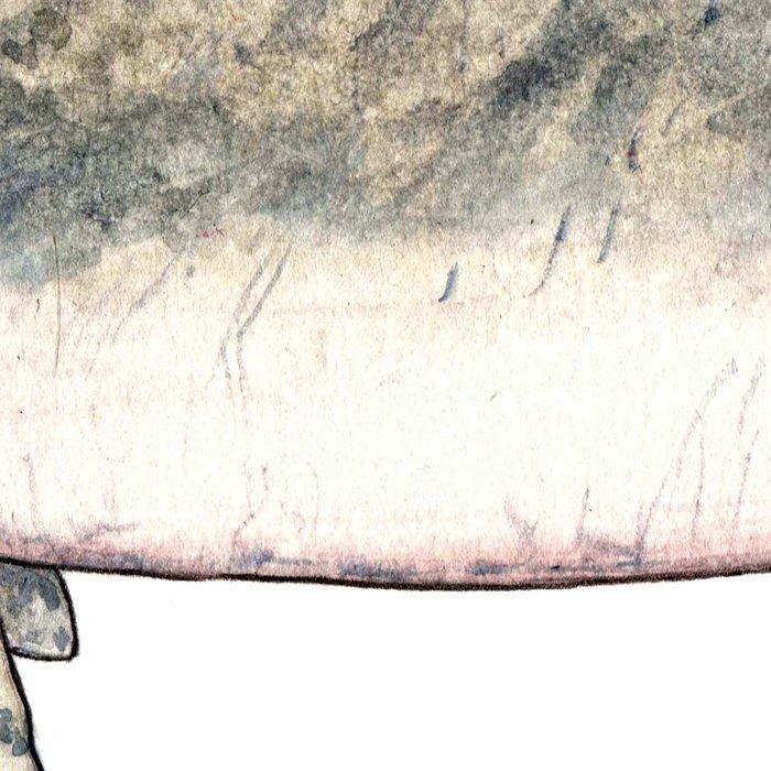 Dugong Leggings