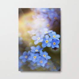 Don't Forget Me no.3863 Metal Print
