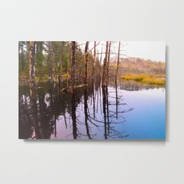 Rainy Autumn Morning by a Lake in the Boundary Waters Metal Print