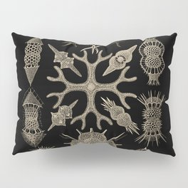 """Spumellaria"" from ""Art Forms of Nature"" by Ernst Haeckel Pillow Sham"