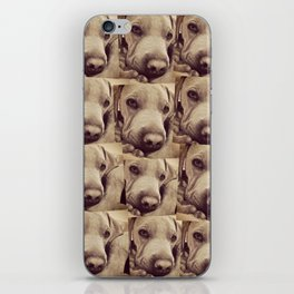 Dogs are Family iPhone Skin