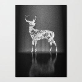 Deer in the Spotlight Canvas Print