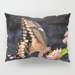 Swallowtail Overexposed Pillow Sham