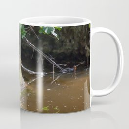 Mallard ducklings Coffee Mug