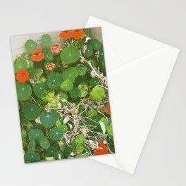 Nasturtium Patch Stationery Cards