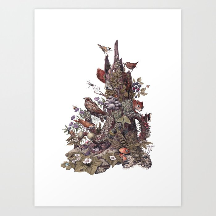 Stump (no labels) Kunstdrucke