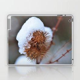Snowy Burrs Laptop & iPad Skin
