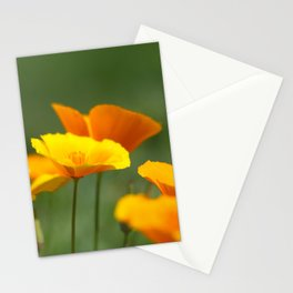 Sunshine Cups Stationery Cards