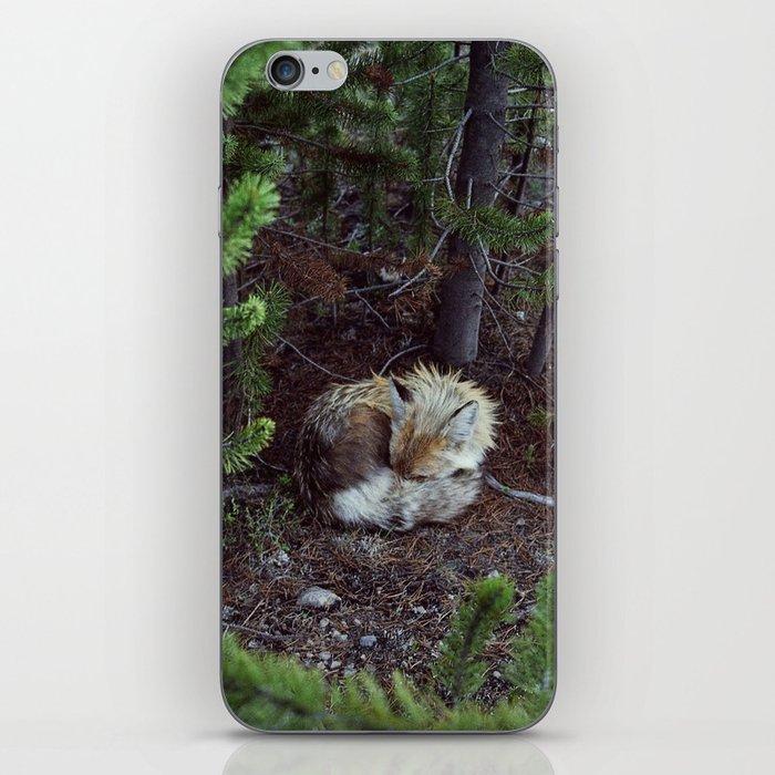 Sleeping Fox iPhone Skin
