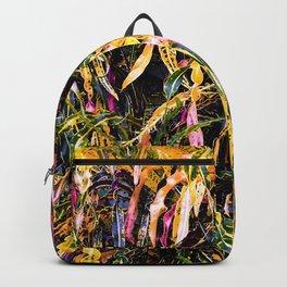 SanFrancisco/ Croton Backpack
