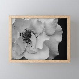 Amicable Framed Mini Art Print
