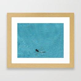 BUG ON THE WATER Framed Art Print