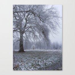 Houghton Hall Park Canvas Print