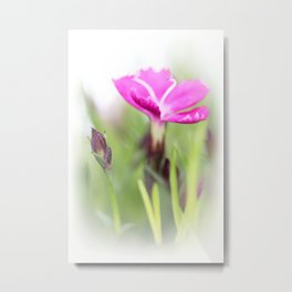 Lilac dream... so sweet... Metal Print