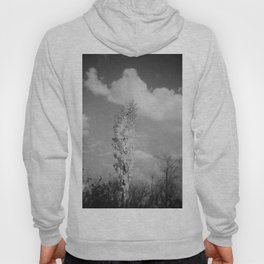 Temescal Canyon Holga Black And White  Hoody