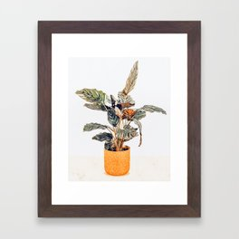 Botany || #illustration #painting #nature Framed Art Print