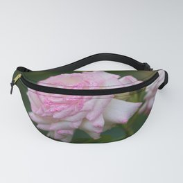 Blooming Pink Roses in the Evening Garden Fanny Pack