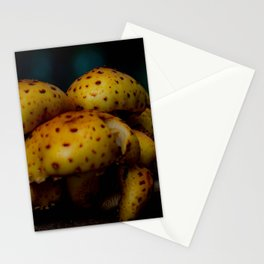 Nature by Design Stationery Cards