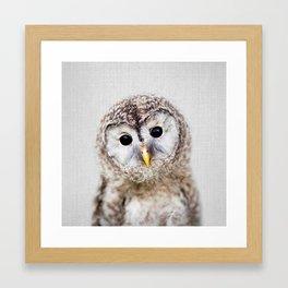 Baby Owl - Colorful Framed Art Print