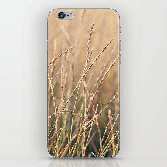 Field in the Sun iPhone & iPod Skin