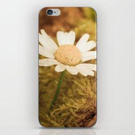 Daisy nature iPhone Skin